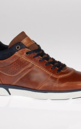 Lloyd & Pryce Trimble Camel Shoe