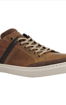 Lloyd and Pryce Harris Camel Shoe