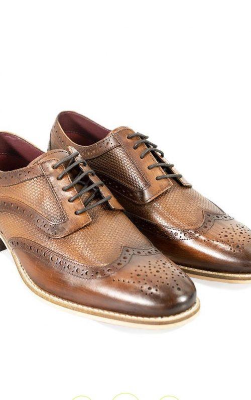 Cavani Tommy Brown Shoes