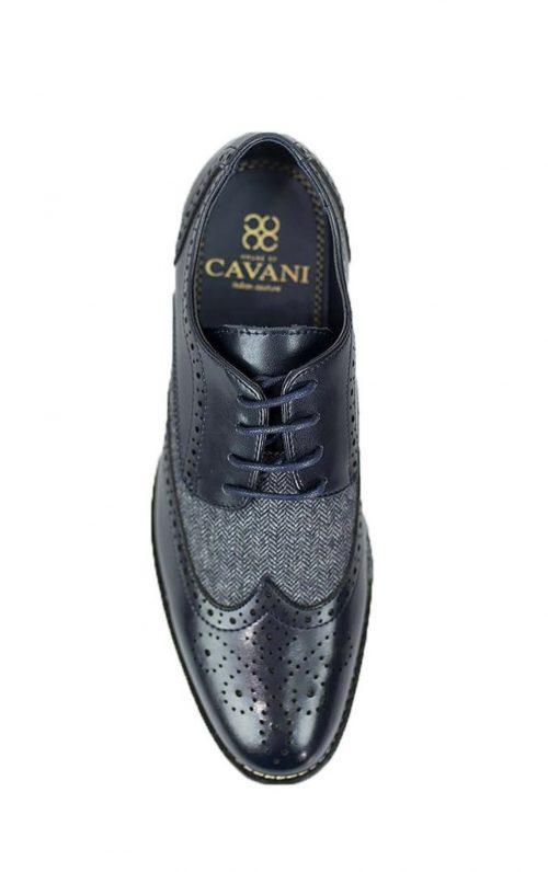 Cavani Horatio Navy Tweed Brogues