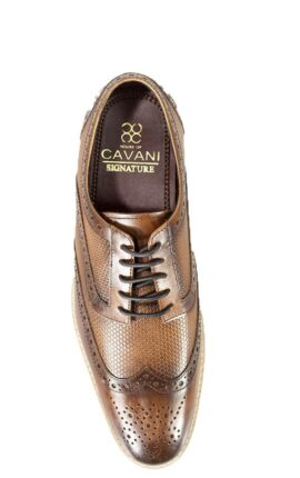 Cavani Tommy Brown Shoes
