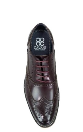 Cavani Oxford Wine Brogues