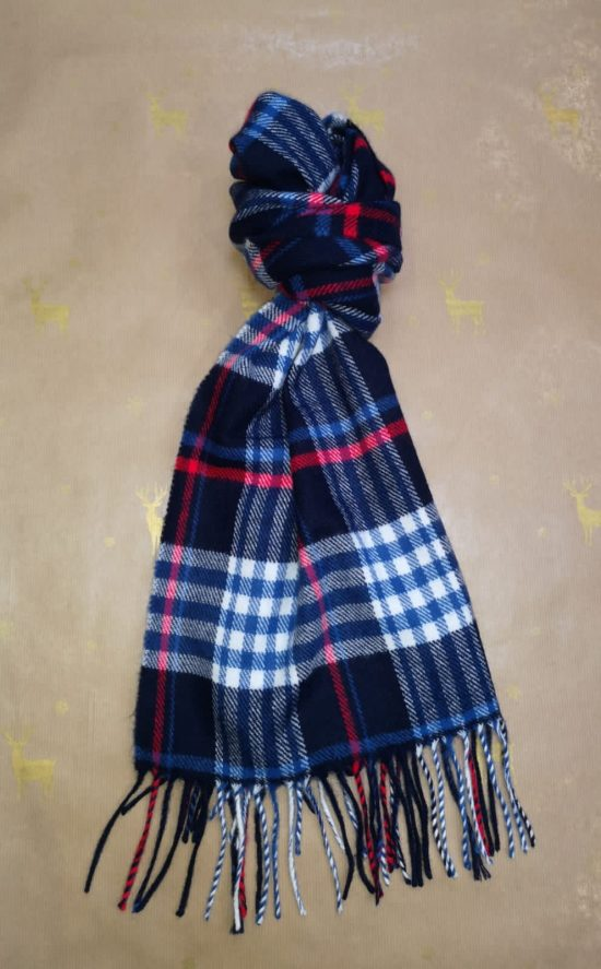 Zazzi Blue Checked Scarf