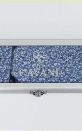 Cavani Blue Tie Gift Set